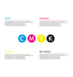 simple cmyk infographic template business concept vector image