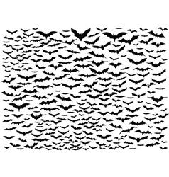 Bat filying around background vector image vector image