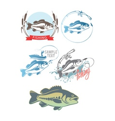 fishing for bass vector image