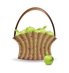 Basket of green apples vector