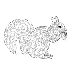 squirrel with nut coloring for adults vector image vector image