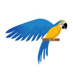 parrot ara ararauna flat icon cartoon style blue vector image vector image
