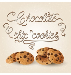 cookies brown vector image