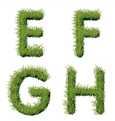 Green Grass Alphabet E F G H vector image