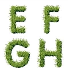 Green Grass Alphabet E F G H vector
