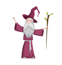 medieval kingdom character isolated old wizard in vector image