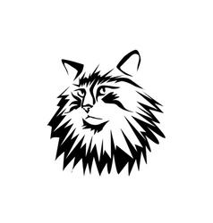 Norwegian forest cat vector
