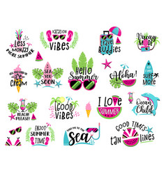 summer badge set vector image