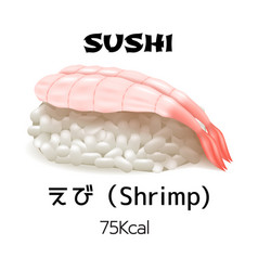 nigiri sushi isolated vector image