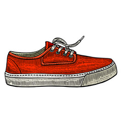 modern red sneakers vector image vector image