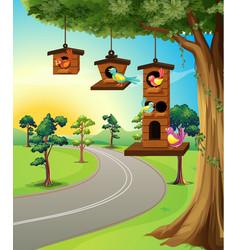 Birds in birdhouse on tree vector