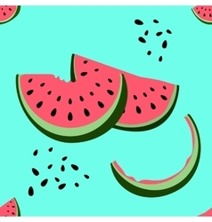 Colorful seamless pattern of watermelon vector image
