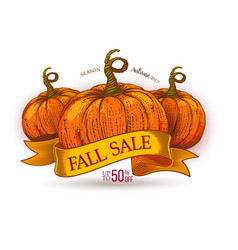 fall sale discount offer on ribbon vector image