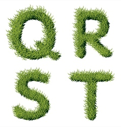 Green Grass Alphabet Q R S T vector image