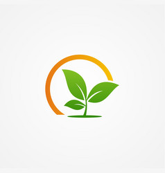 Plant seed organic green logo vector