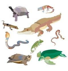 reptiles and amphibians decorative set cobra vector image