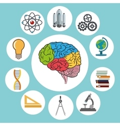 Science design Colorfull Brain icon vector image