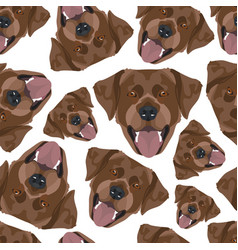 seamless pattern chocolate labrador vector image