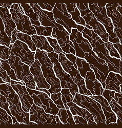 seamless pattern of bark texture wood vector image