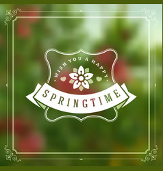 spring typographic greeting card or poster vector image