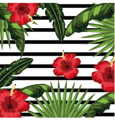 tropical flowers and leaves plants vector image