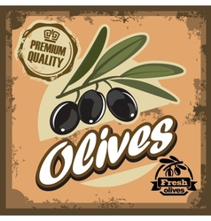 vintage olive sign vector image
