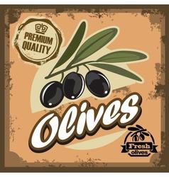 vintage olive sign vector image vector image