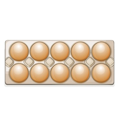 eggs in a packet vector image