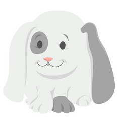 baby rabbit cartoon animal character vector image