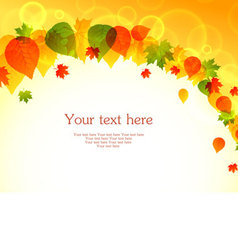 banner autumn leafs vector image
