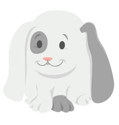 barabbit cartoon animal character vector image