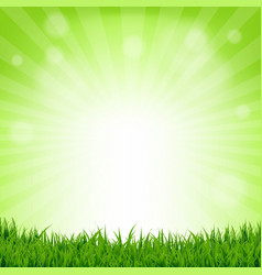 Grass and bokeh nature poster vector
