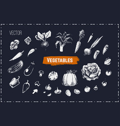 hand drawn vegetables set chalk icons vector image