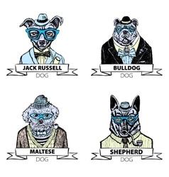 Hipster animals set dog Large group of dog breeds vector image