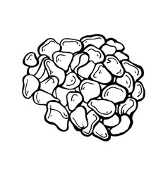 Painted sea pebbles vector