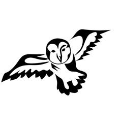 peacock owl vector image