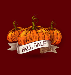 Fall sale sketch pumpkins vector