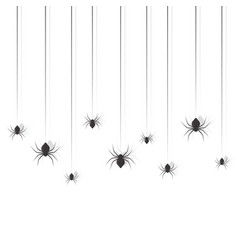 hanging spiders halloween sing design set vector image