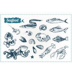 seafood sketches set vector image