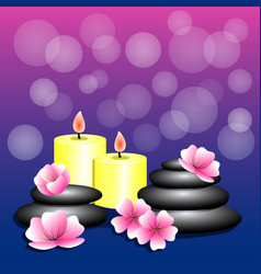 spa background bamboo candles spa stones flowers vector image