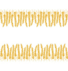 wheat doodles background vector image