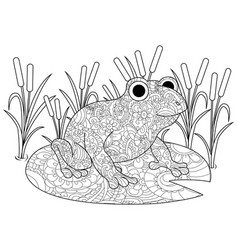 frog on a lily in the swamp coloring book for vector image