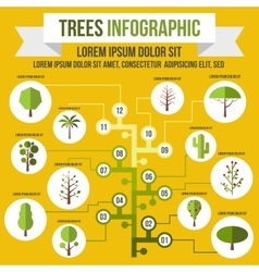 Tree infographic flat style vector image vector image