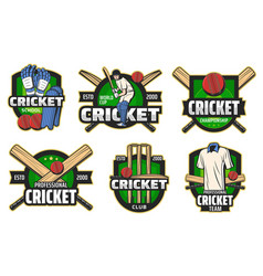 Cricket ball bat wicket and batsman player icons vector