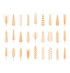 agricultural symbols isolated on white background vector image vector image