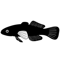 Silhouette of gudgeon vector image