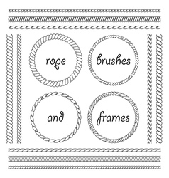 Collection of frames and brushes of the braided vector