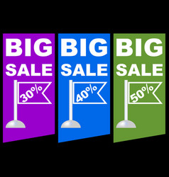 Big sale discount percent colored label with vector