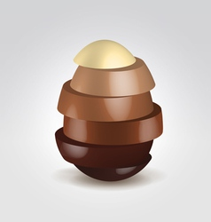Chocolate slices made egg shape vector image