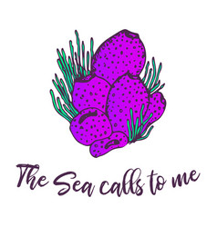 sea creature hand drawn sketch ocean life vector image